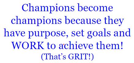 Grit Lesson 6 activity text 2